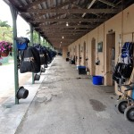Standardbred Stable at Lindy Farms