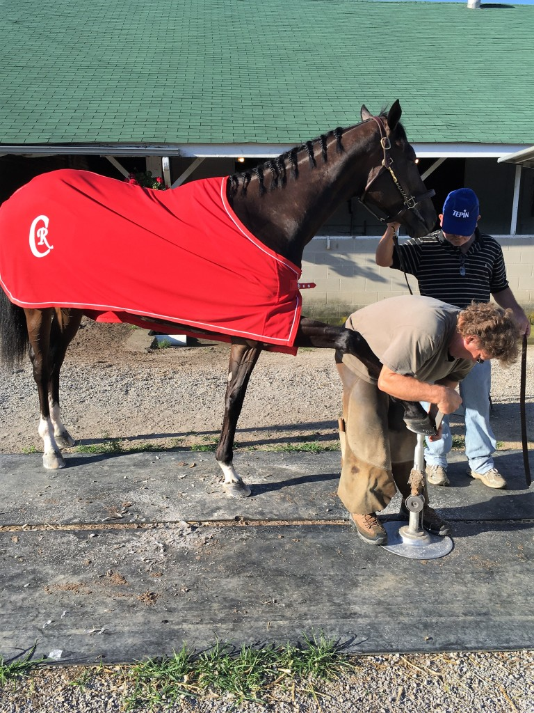 Kevin Howard applying the finishing touch to Tepin
